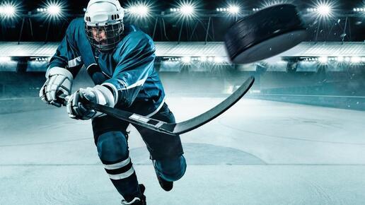 Was Anreizsysteme im B2B-Vertrieb mit Hockey-Schlägern zu tun haben